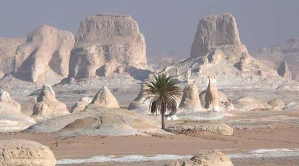 Сафари по Белой Пустыне