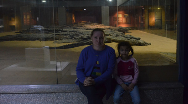 Mummified crocodiles main display.
