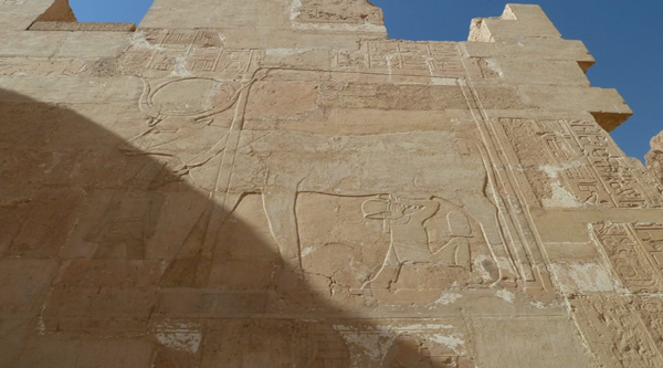 Picture of Lion on the temple's wallStatue of god Horus.