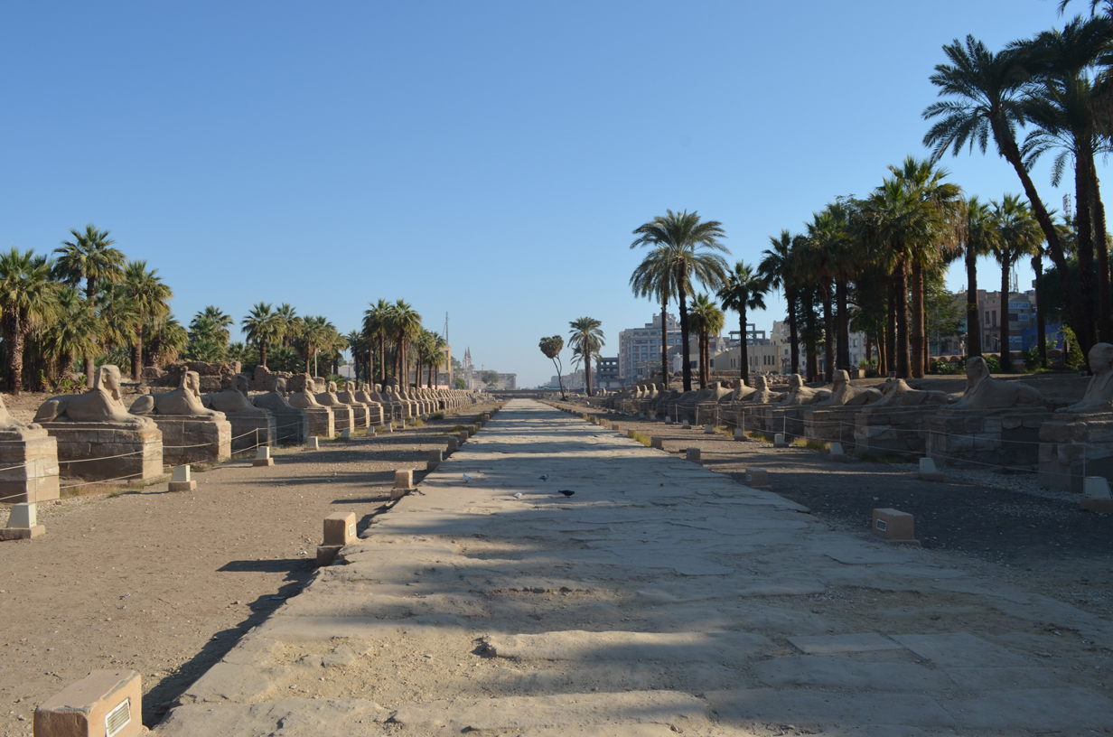 Sphinxes avenue in Luxor