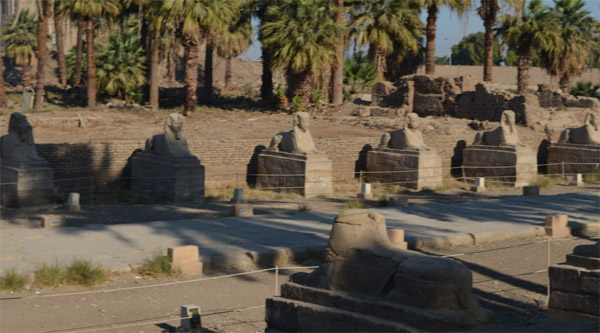 Sphinxes avenue in Luxor temple premises.