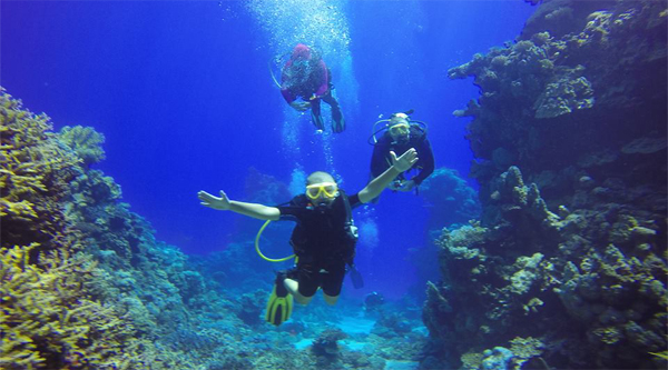 PADI courses in Sharm el Sheikh