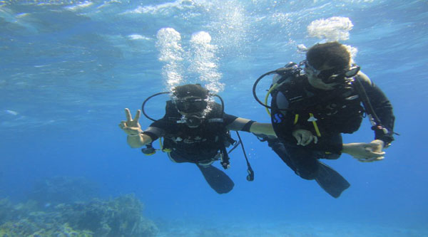 Introductory scuba diving excursions in Sharm el Sheikh
