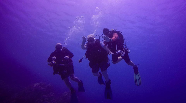 Introductory Scuba excursions in Sharm el Sheikh