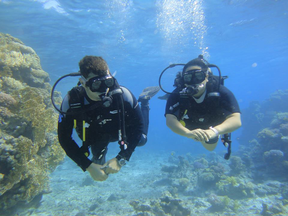 Daily scuba diving activities from Sharm el Sheikh