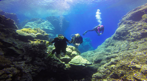 Diving excursions in Sharm el Sheikh.