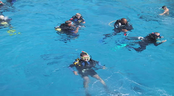 Divers in the sea are ready for their experience