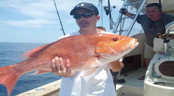 Sharm el Sheikh fishing excursions