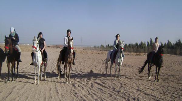 Arabian horse back riding in Sinai desert