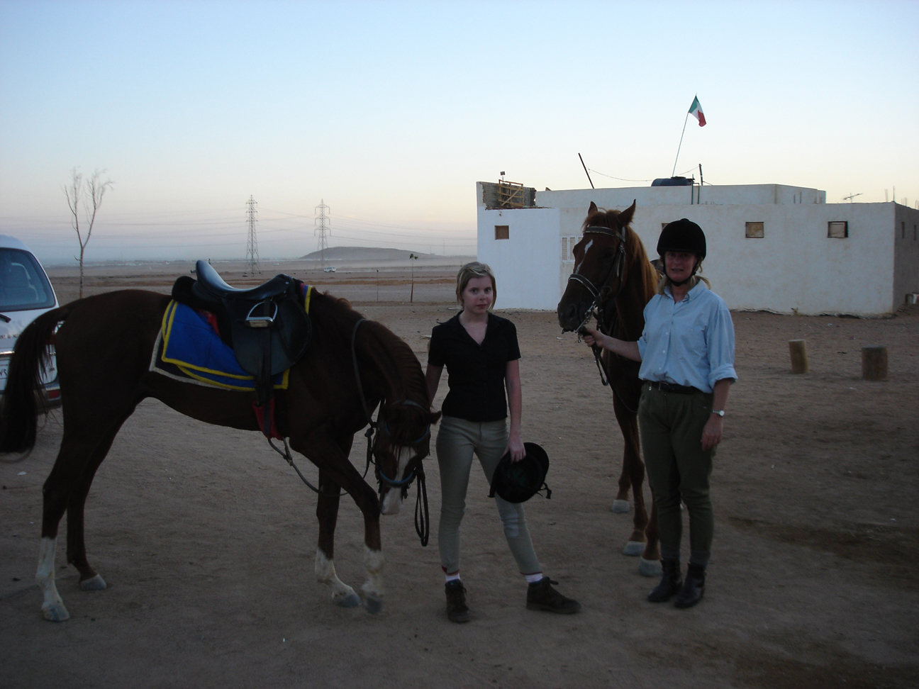 Horse back riding excursion to Sinai desert from Sharm el Sheikh
