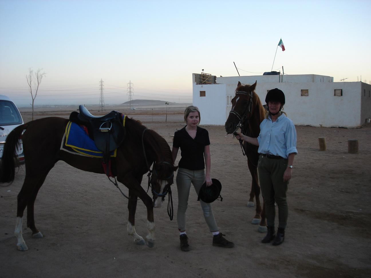 Escursione a cavallo nel deserto del Sinai da Sharm el Sheikh