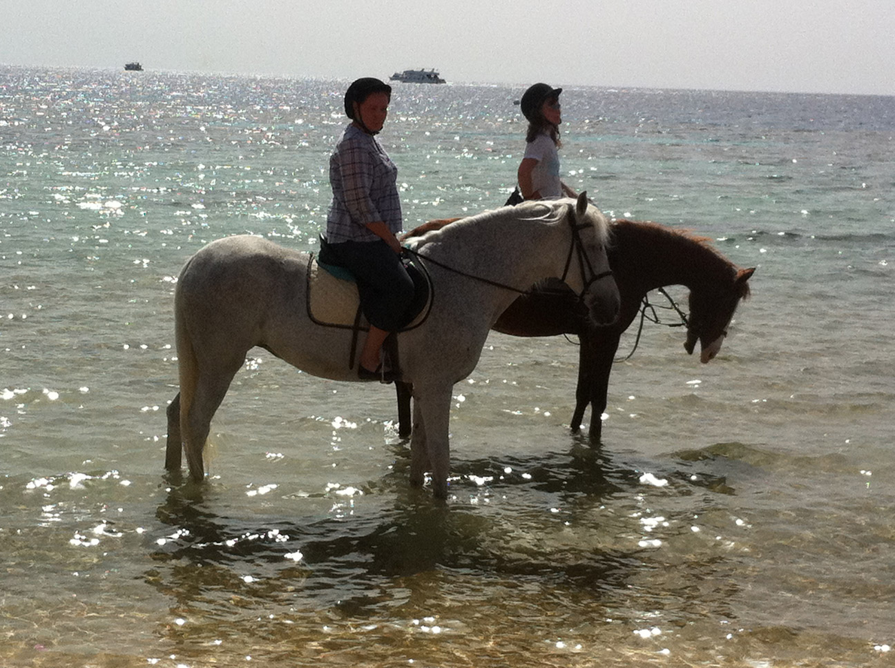 Horse riding along the beaches of Sharm el Sheikh