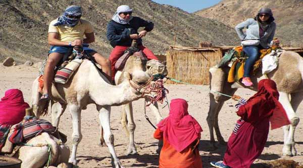 Camel riding activity in Hurghada