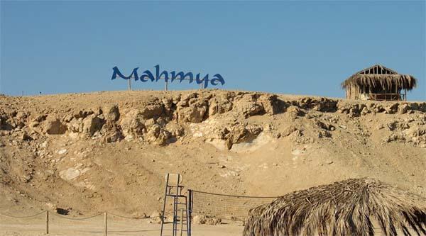Сноркелинг на острове Махмия