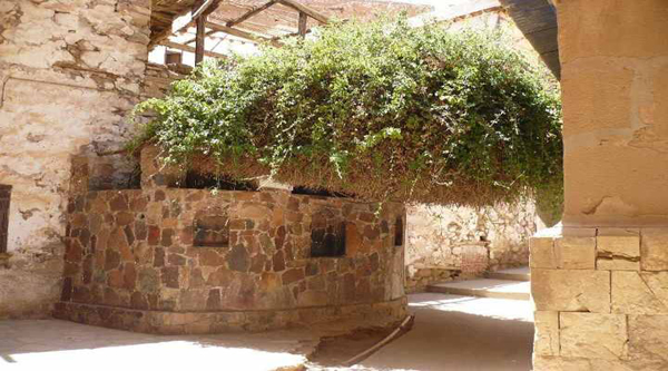 The Burning bush at St Catherine monastery