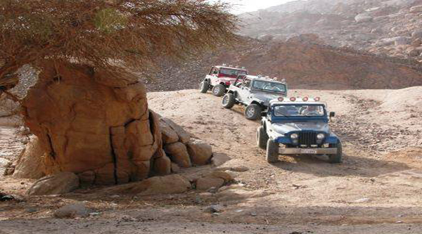 Self-drive safari via Sinai desert