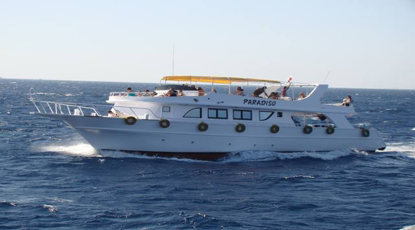Private boat excursion in Sharm el Sheikh