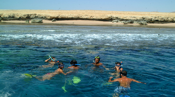 Red Sea snorkeling excursions.