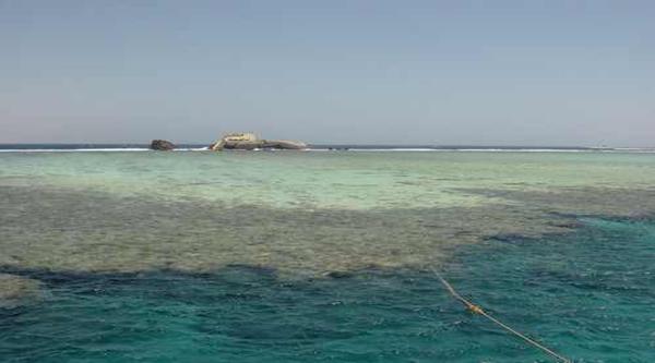 Кораловый риф возле острова Тиран