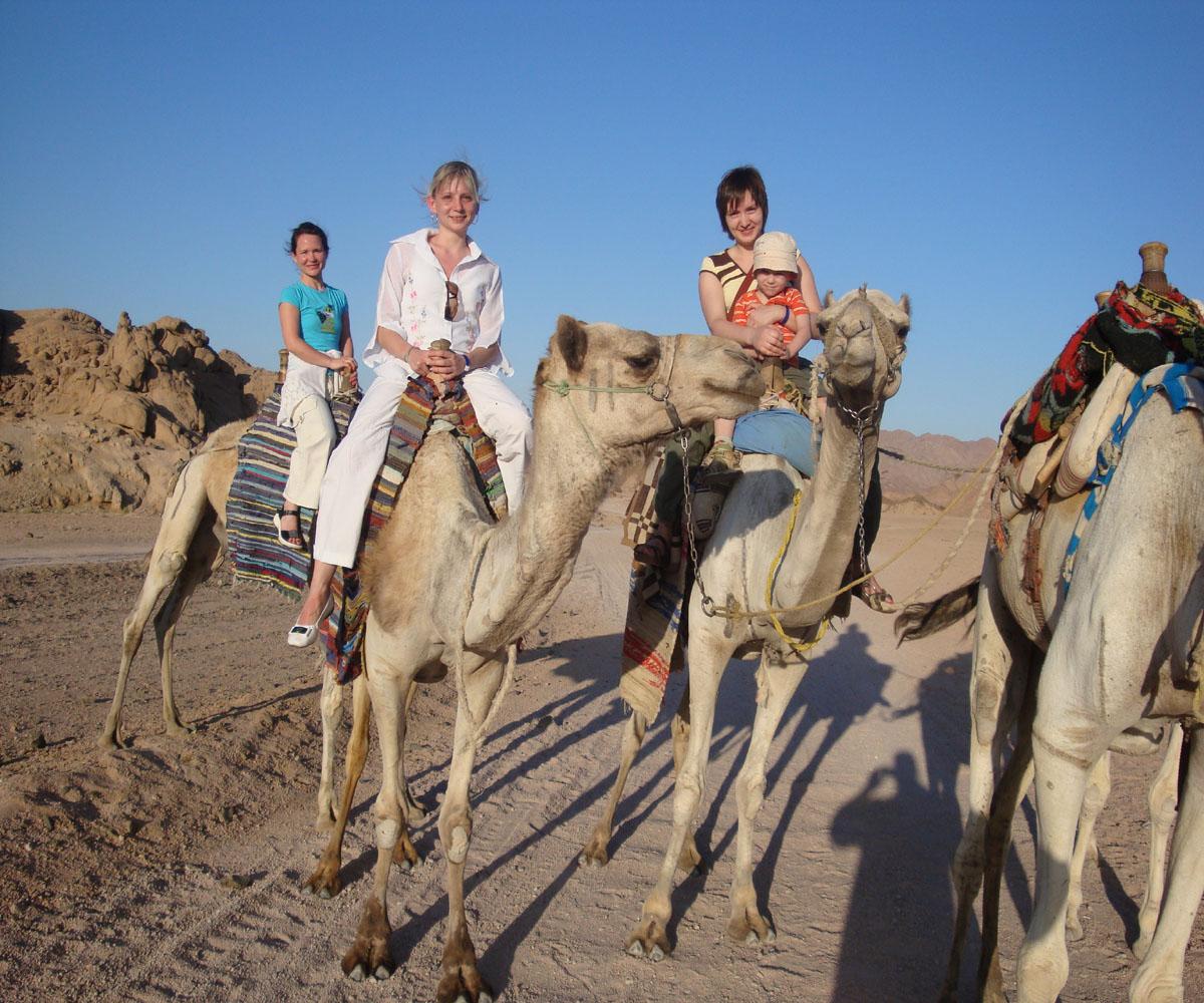 Camel riding activity on Mega safari excursion
