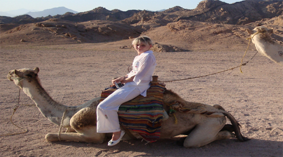 Sharm el Sheikh evening Camel riding excursions