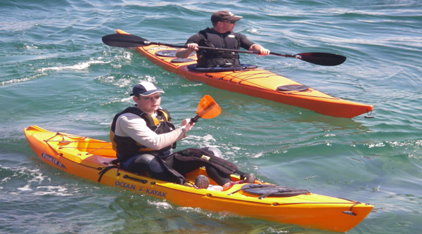 Red Sea kayaking excursion