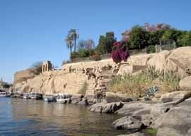 botanical garden at Aswan