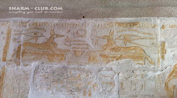 God Anubis on the tomb's wall.